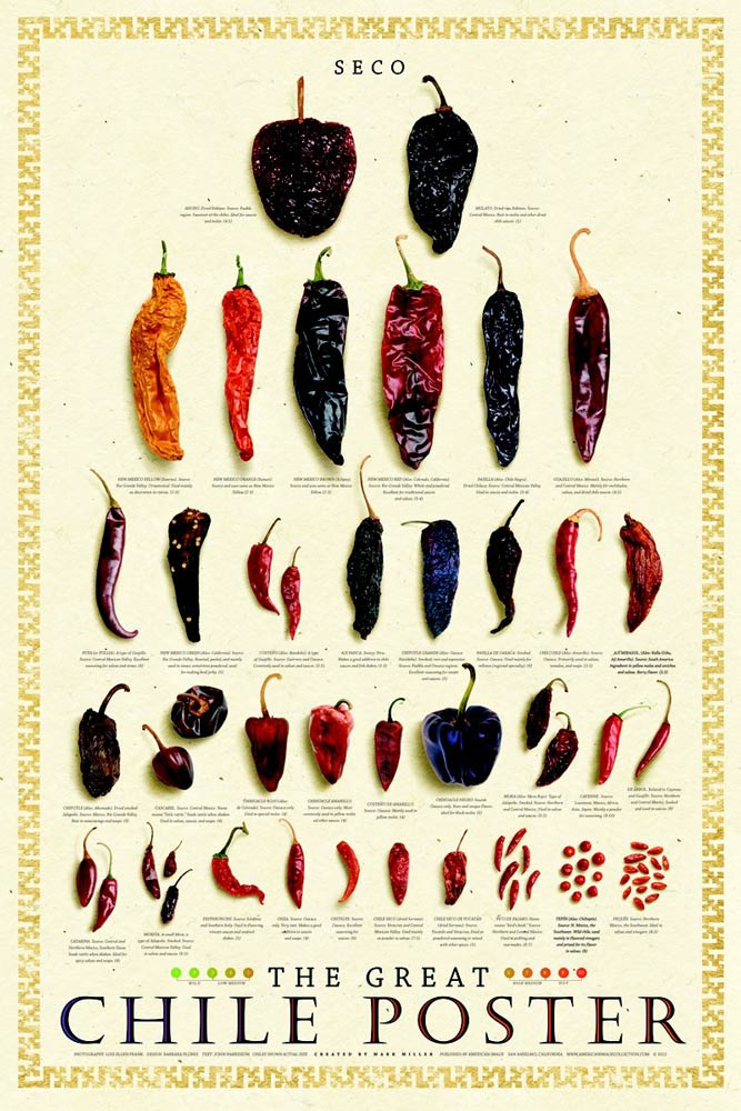 Chile dried poster variety.jpg