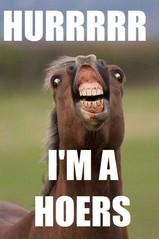 Im_a_horse.jpg