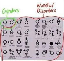 Genders vs mental disorders.jpg