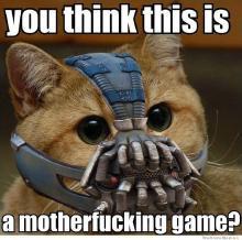 bane-cat.jpg