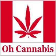 oh-cannabis.jpg