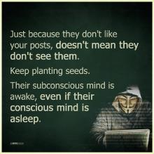 keep-planting-seeds.jpg
