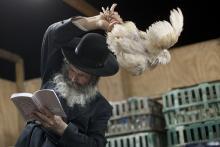 Kapparot Rabbi waves chicken.jpg